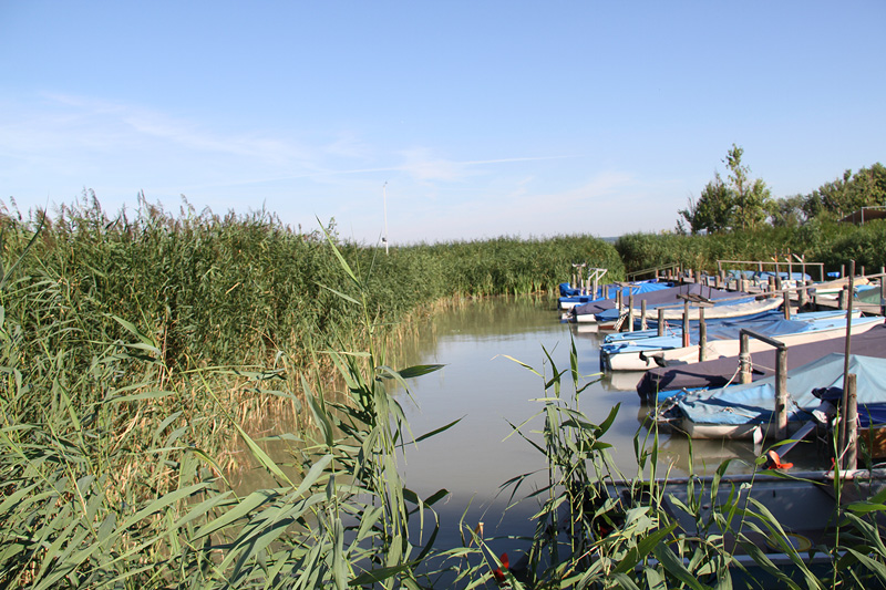 Boote in Weiden am Neusiedler See